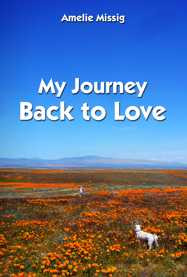 My Journey Back to Love
